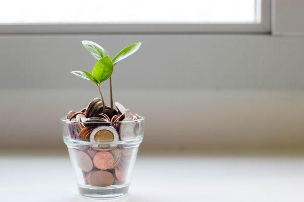 Nachhaltigkeit und Geld sparen